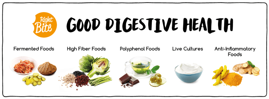 10 Digestive System Tips